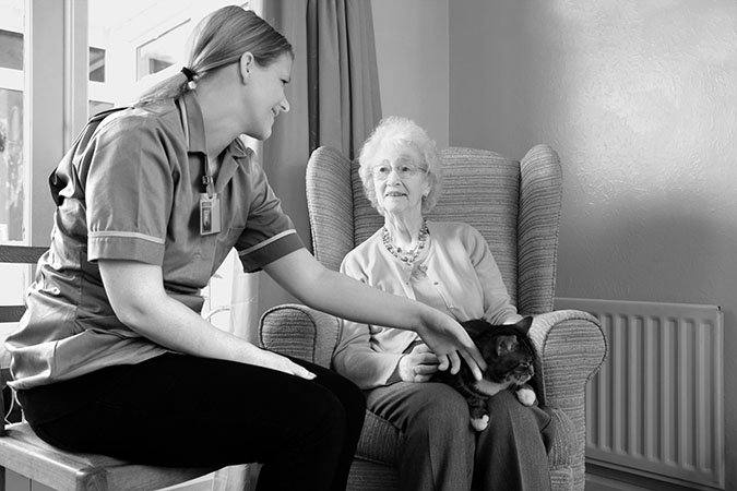 rehoming the elderly's pets
