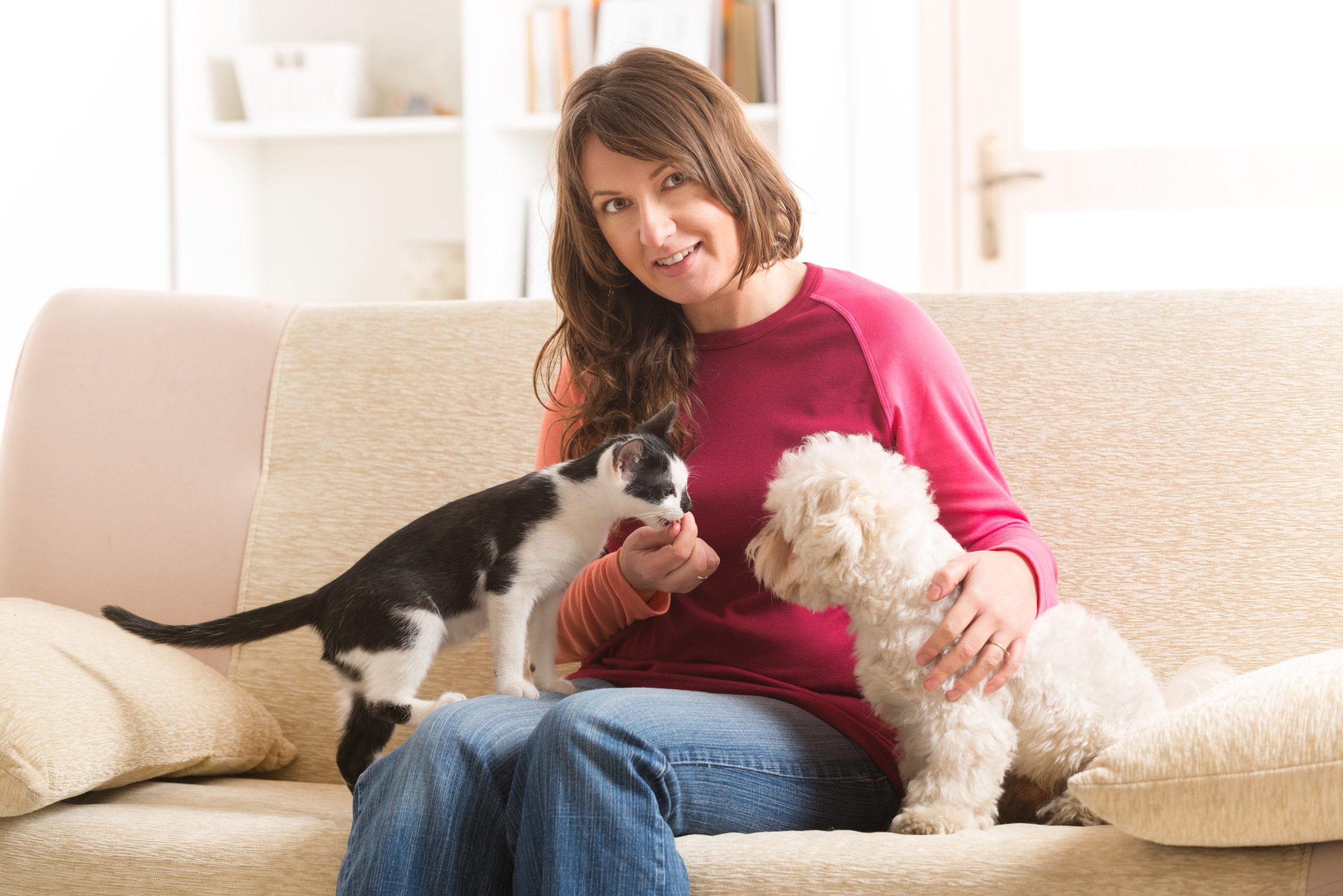 feline friendly
