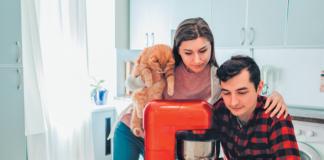 cat food recipe
