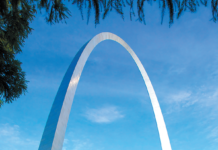 St. Louis is one of America's top 10 cat-friendly cities.