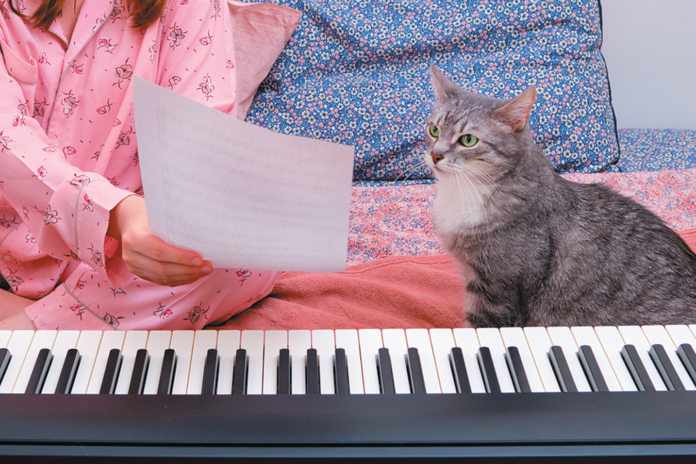 He can't learn to read music, but you can still teach him a lot of other fun tricks.