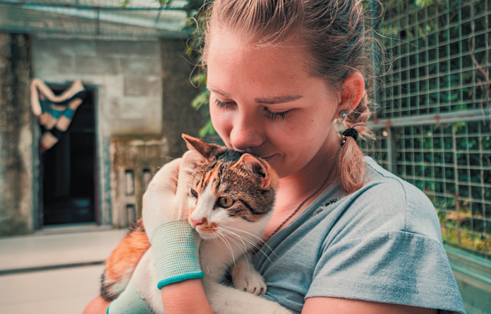 No one wants to relinquish a cat to a shelter, but sometimes it's the best thing.